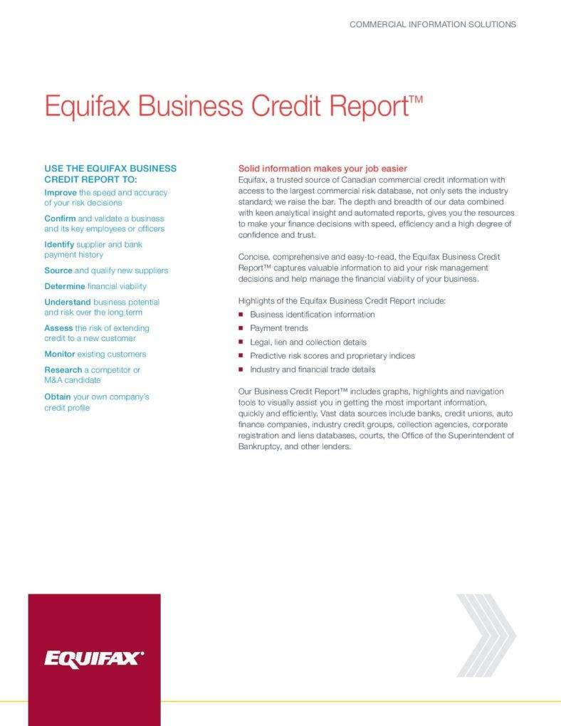 business-credit-report-page-001