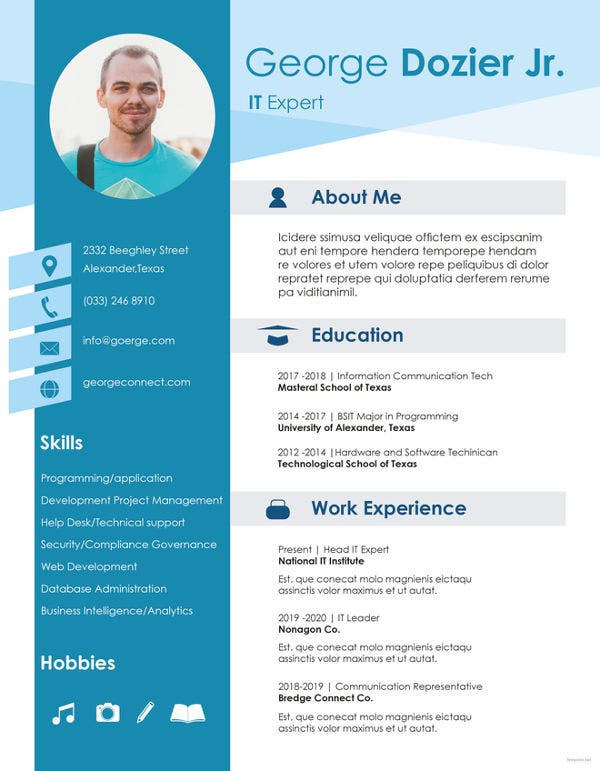 20+ Professional IT Resume Templates - PDF, DOC | Free & Premium ...