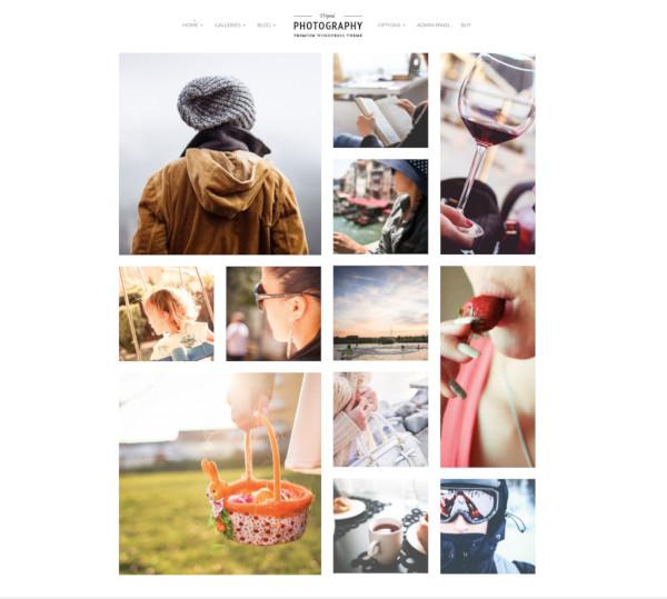 professional wordpress photography theme