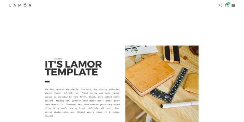 lamor2 788x394