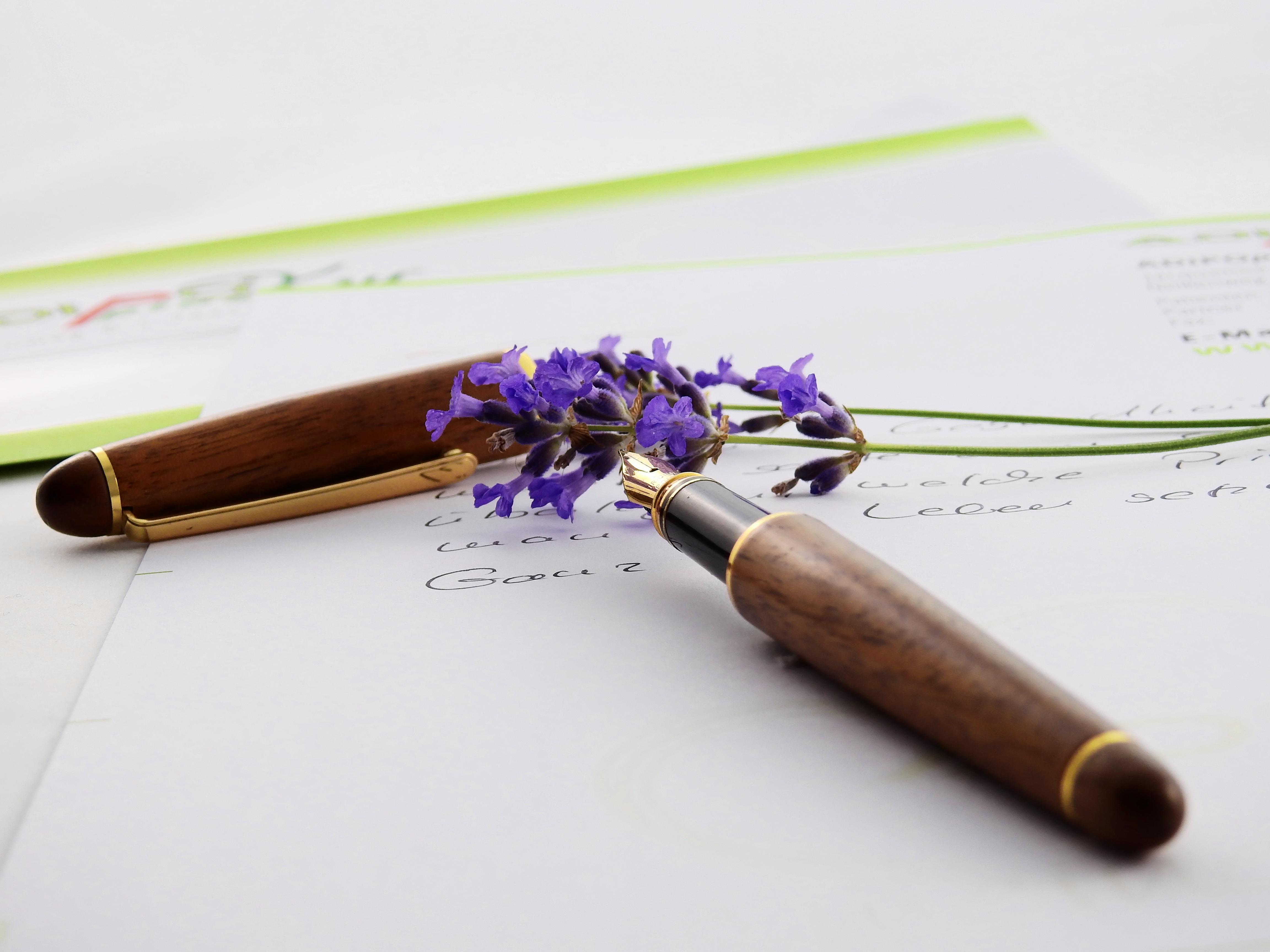 lavenderflowerpurplenature158644