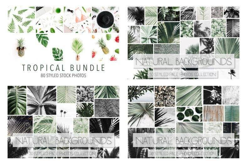 tropical-bundle