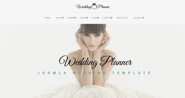 weddinplanner
