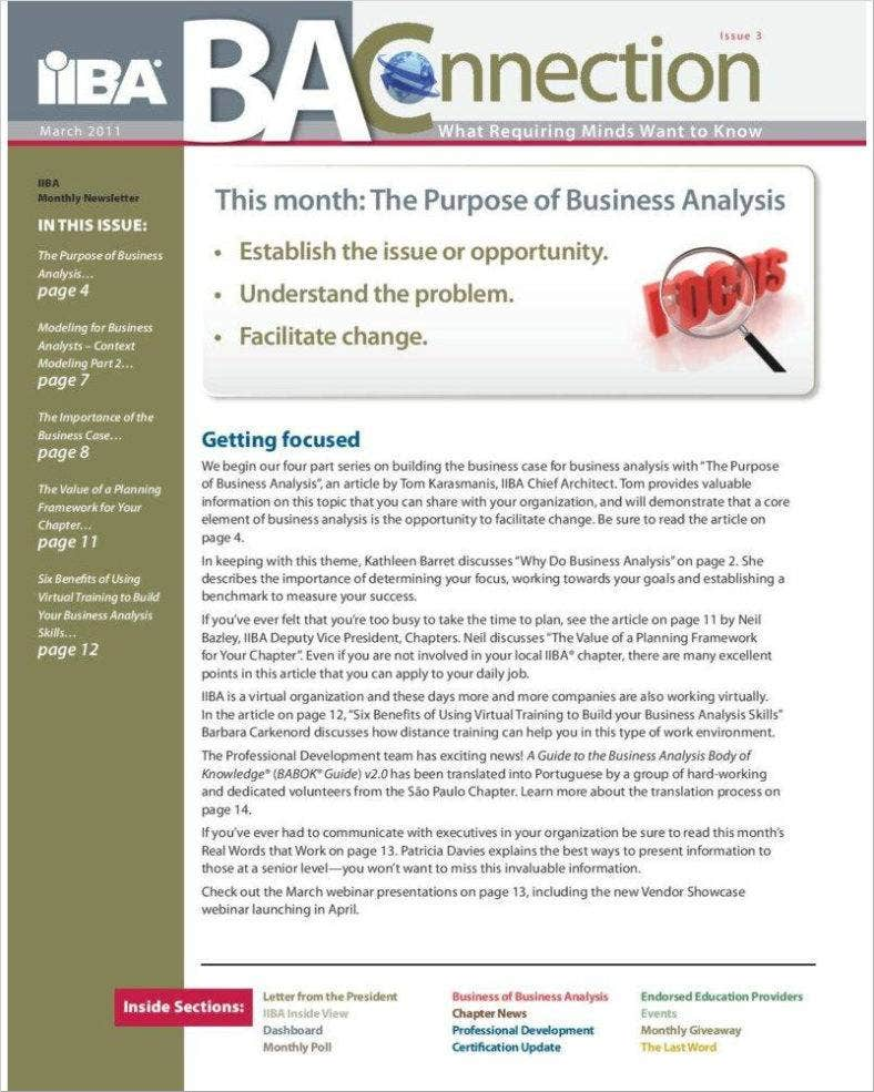 business analyst newsletter page 001 788x102056 788x985