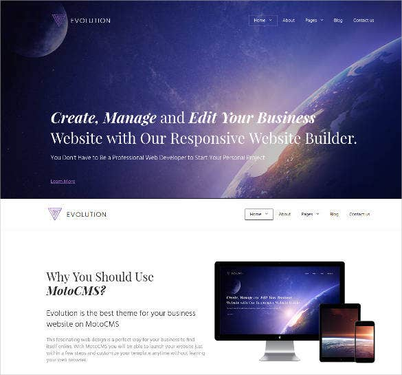 business website theme design