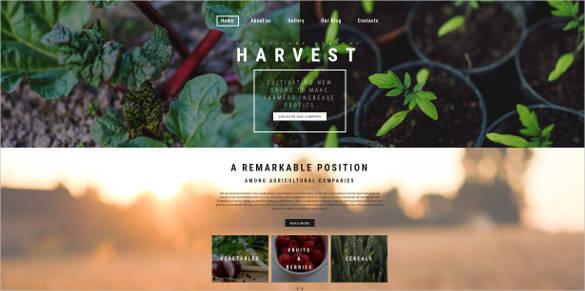 harvest responsive responsive website theme