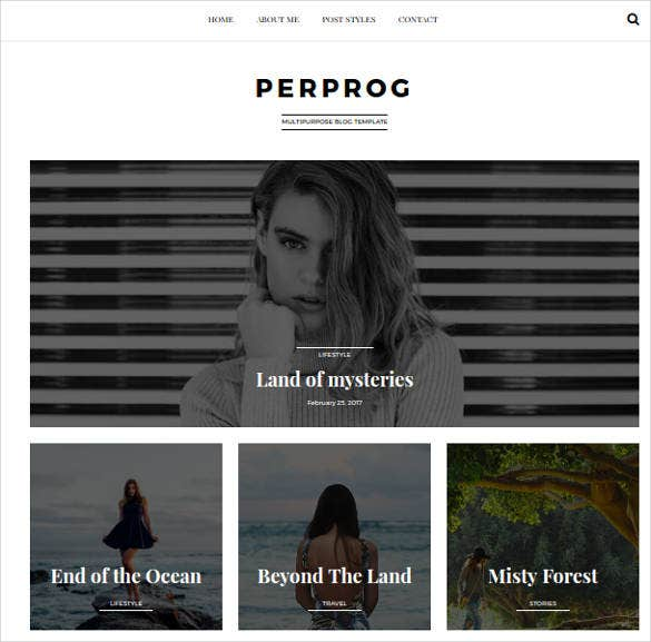minimalist wordpress website blog theme
