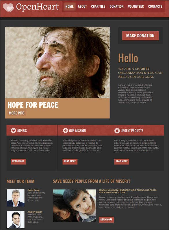 non profit website theme template