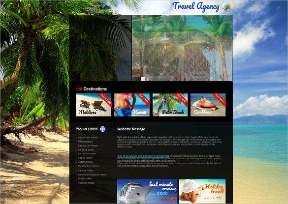 tour and travel agency website