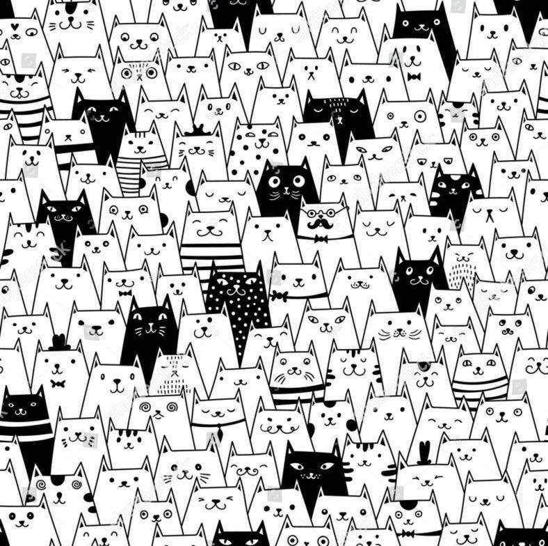 black adn white cat head bg 788x784