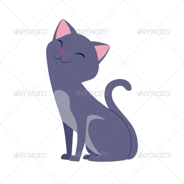 cute happy gray cat