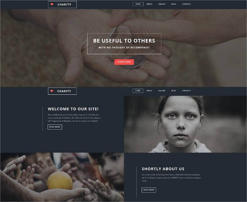fund for charities responsive website template 788x644