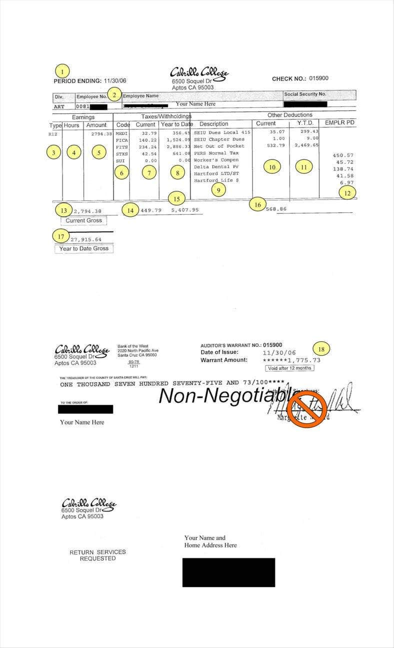 9  blank pay stub templates