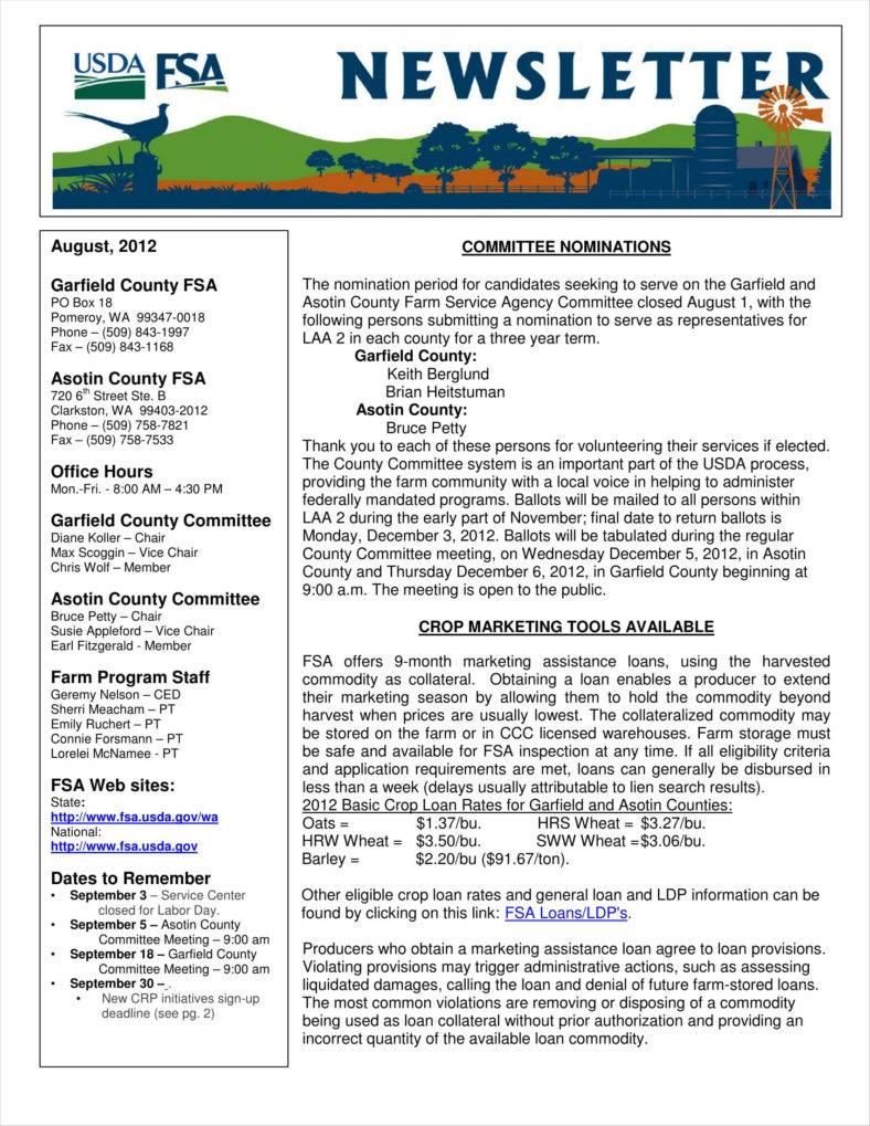 newsletter template - radioliriodosvalesonline.tk