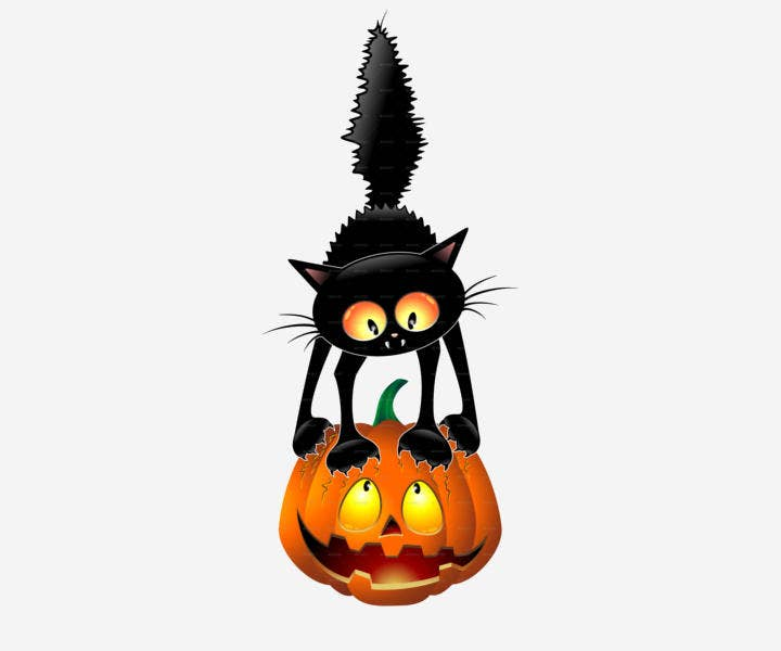 Funny Halloween Cartoon Cat