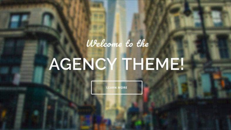 agency15