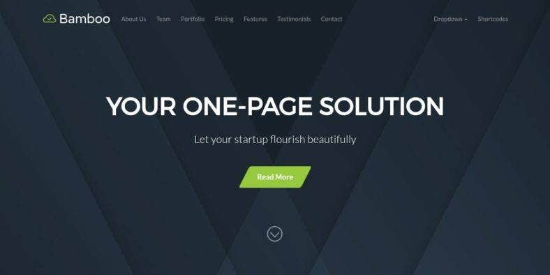 onepage22