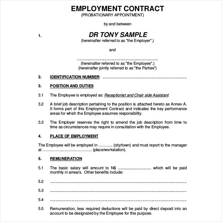 basic cleaning employment contract