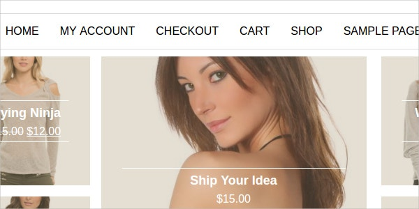 free online ecommerce wordpress theme1