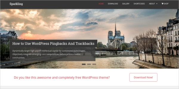 free sparkling ecommerce wordpress theme