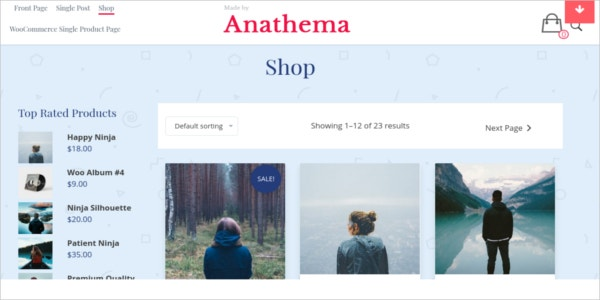 free ecommerce editable wordpress theme