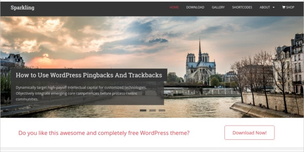 free ecommerce flat design wordpress theme