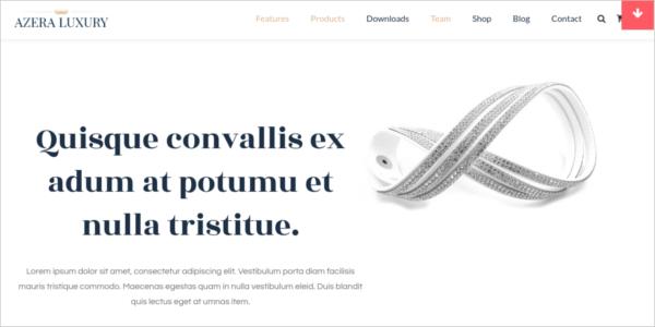 free-ecommerce-online-store-wordpress-theme