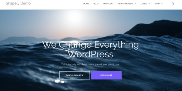 free ecommerce store wordpress theme