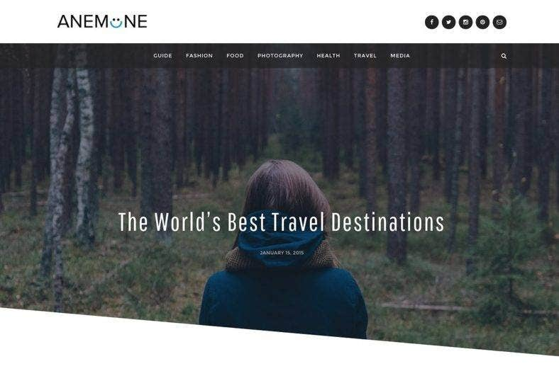 anemone-magazine-wordpress-theme-2