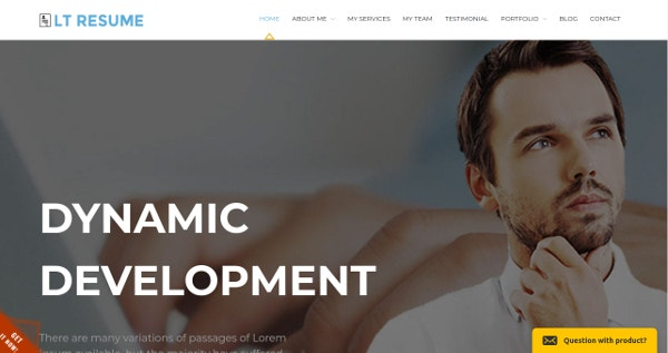 Responsive Resume WordPress theme