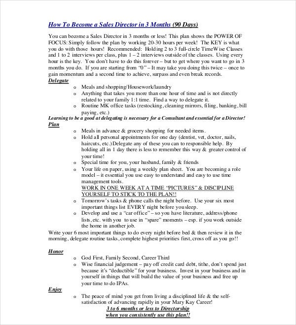 90 day sales director plan