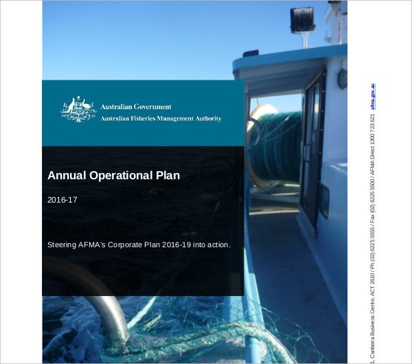 annual operational plan example