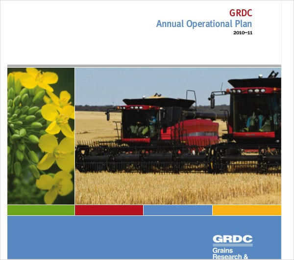 annual operational plan printable
