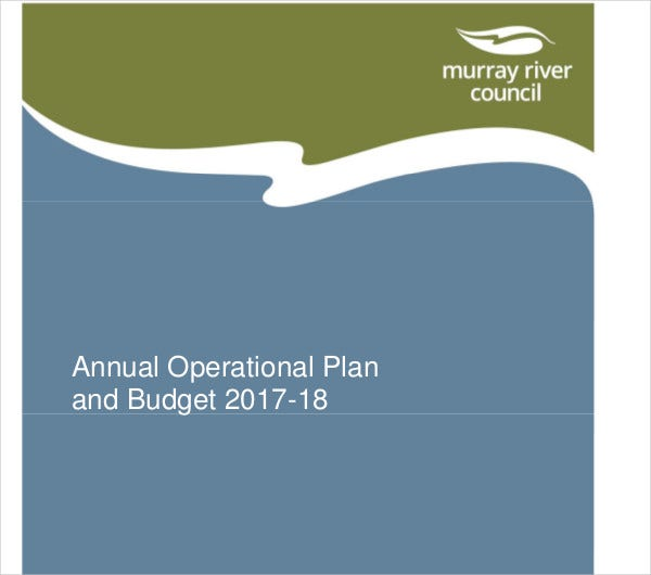 annual operational plan and budget