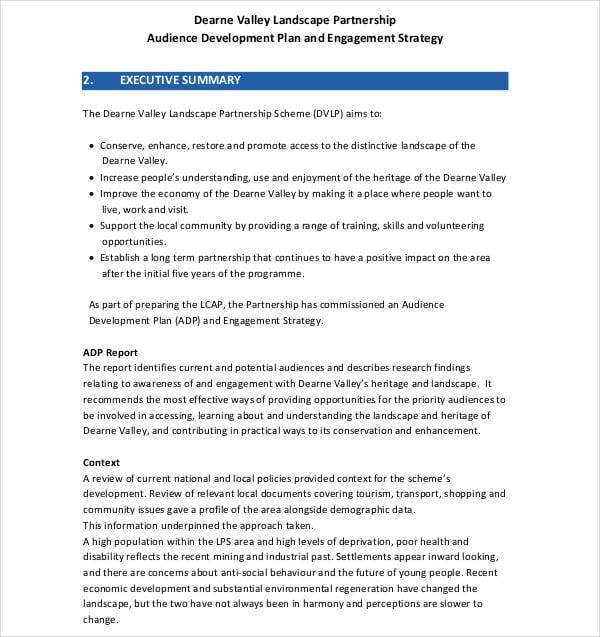 audience development plan strategy
