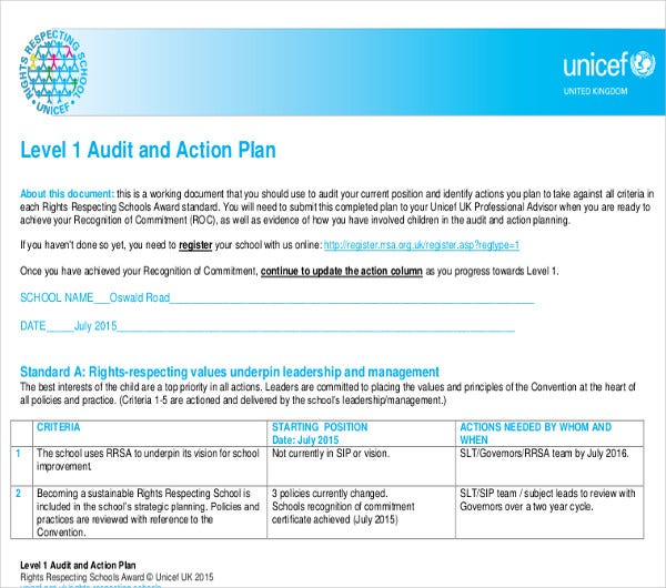 audit and action plan example