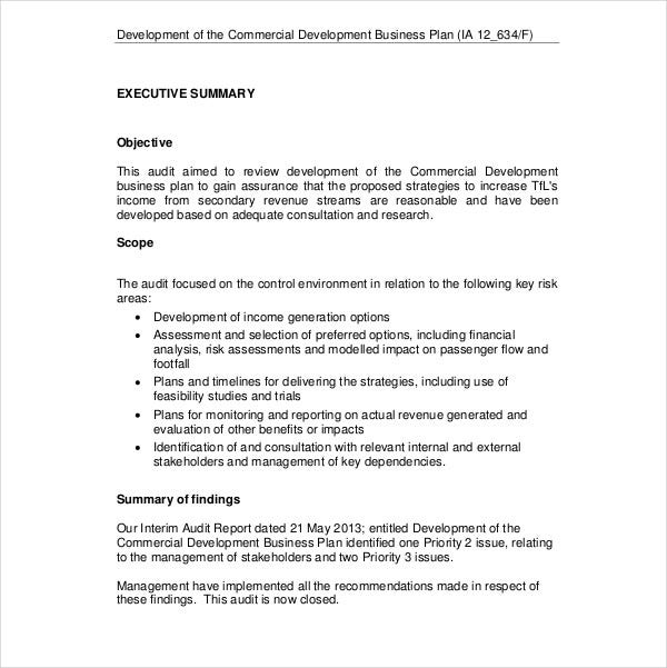 commercial development business plan
