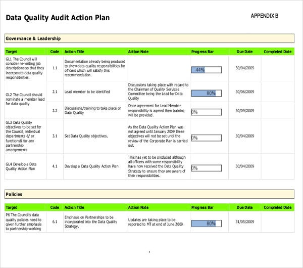data quality audit action plan