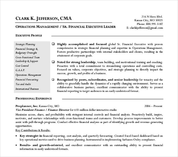 finance director resume example