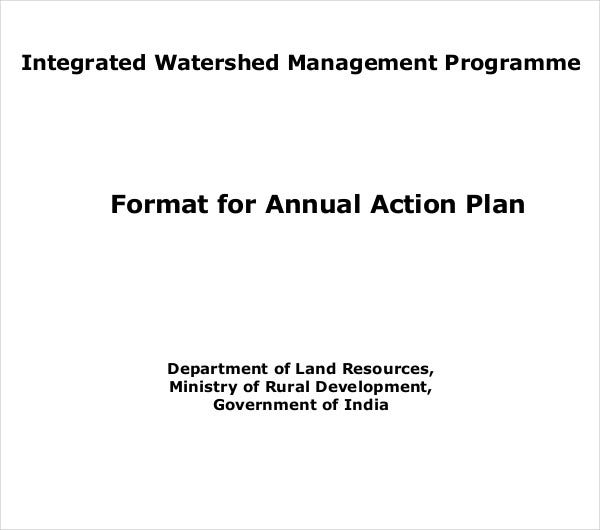 format annual action plan