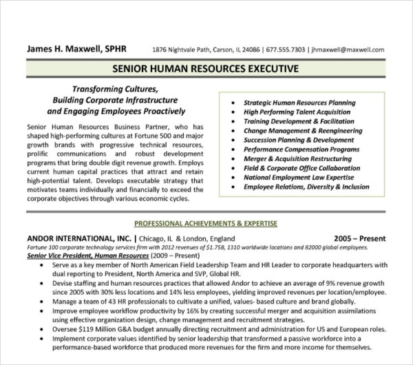 human resource resume example