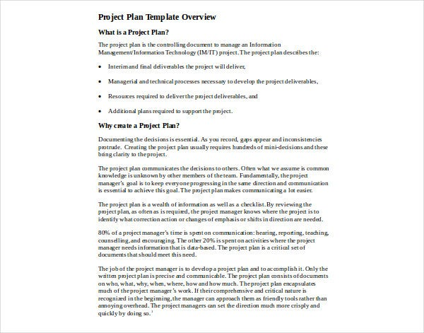 it project plan template2
