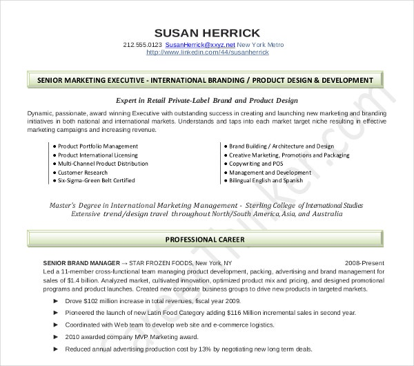 20+ Executive Resume Templates - PDF, DOC | Free & Premium Templates