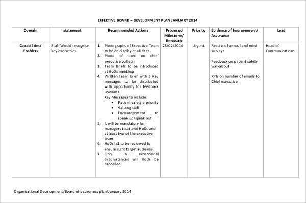 organisational board development plan