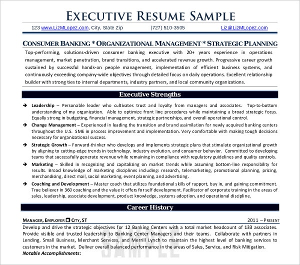 professional executive resume sample