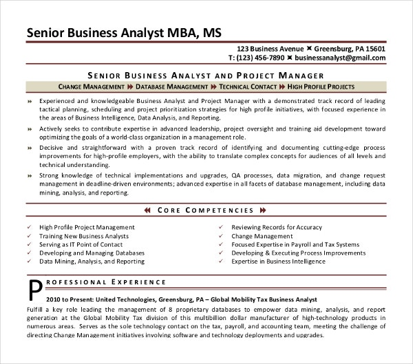 project manager business analyst cv