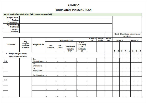 project work and financial plan