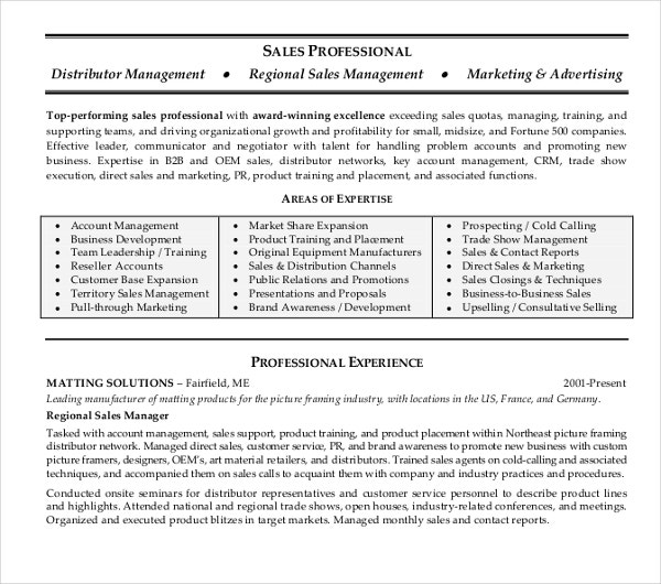 sales professional resume