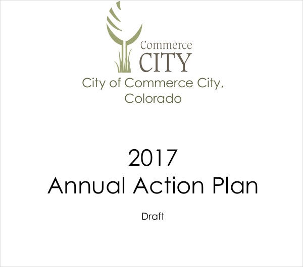 sample annual action plan