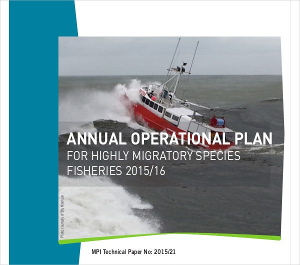 sample annual operational plan